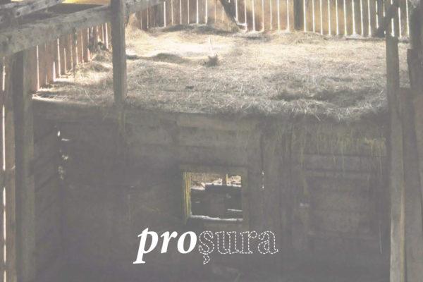 Proşura. Construcții vechi pentru timpuri noi/ Asociația Câte-n lună și-n mansardă, Pro Patrimonio, 2013